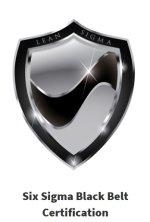 Six Sigma Black Belt online Certification