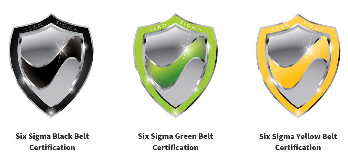Six Sigma Certification Courses