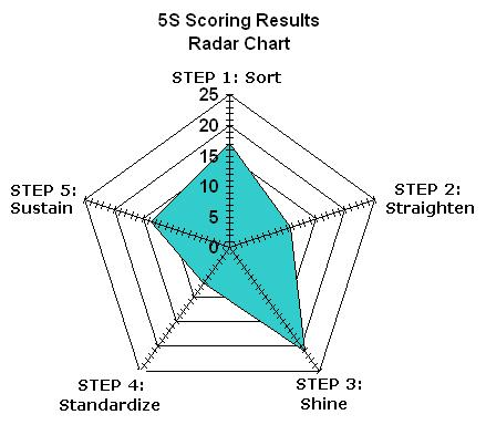 Sample 5S Radar Chart for displaying results